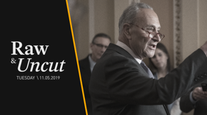 """Senate Minority Leader Chuck Schumer (D-NY) tells the National Security Commission on A.I. that restricting immigration is """"hurting us"""" in scientific development"""