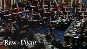 Watch the Senate reject the motion to bring in witnesses for the president's impeachment trial